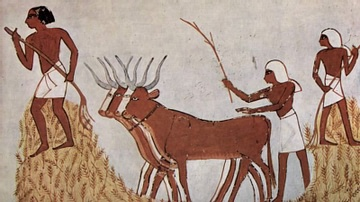 Threshing of Grain in Egypt