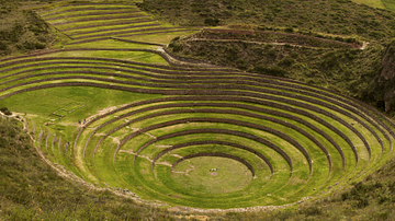 Inca Food & Agriculture