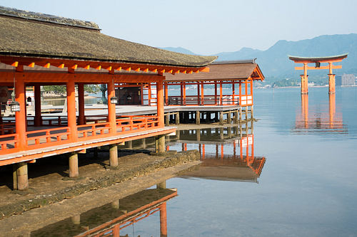 Itsukushima Shrine (by C.K. Tse)
