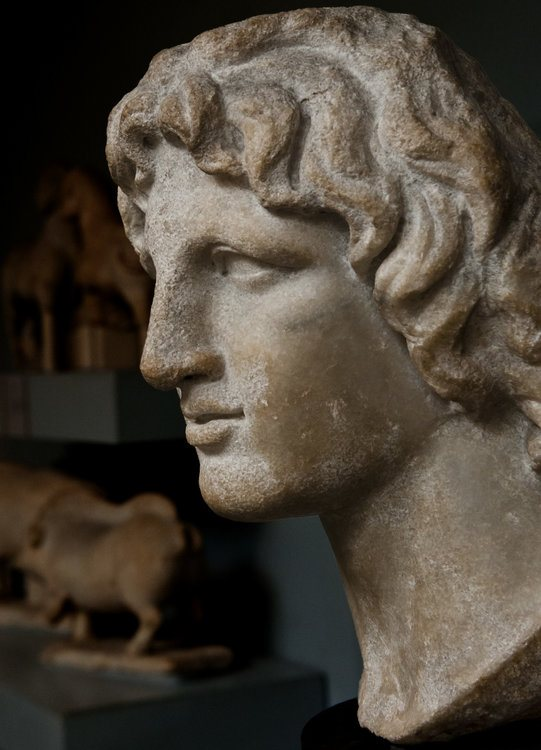 Alexander the Great [Profile View]